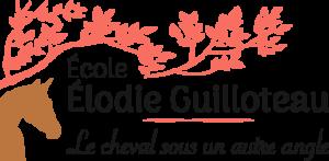 École Élodie Guilloteau - Le cheval sous un autre angle